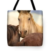 White Stallion Wild Horses On Navajo Indian Reservation  Tote Bag