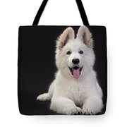 White Swiss Shepherd Dog Tote Bag