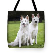 White Swiss Shepherd Dogs Tote Bag