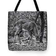 White-tail Deer Tote Bag