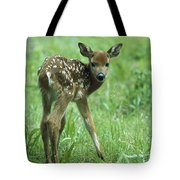 White-tailed Deer Fawn Meadow Tote Bag