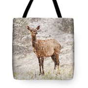 White Tailed Deer In Snow Tote Bag