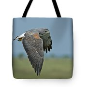 White-tailed Hawk Tote Bag