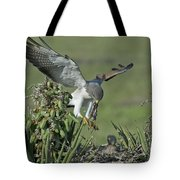 White-tailed Hawk At Nest Tote Bag
