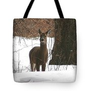 White-tailed Winter Stand  Tote Bag
