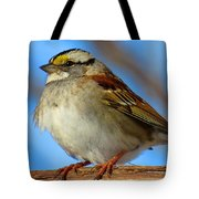 White Throated Sparrow And Blue Sky Tote Bag