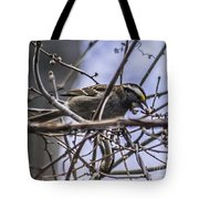 White-throated Sparrow With Berry Tote Bag