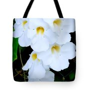 White Thunbergia On The Fence Tote Bag
