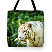 White Tiger Portriat Tote Bag