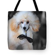 White Toy Poodle Tote Bag