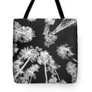 White Trees Tote Bag