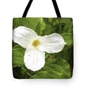 White Trillium Flower Tote Bag