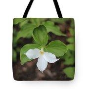 White Trillium Tote Bag