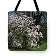 White Tulip Tree Tote Bag