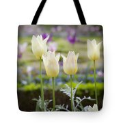 White Tulips In Parisian Garden Tote Bag