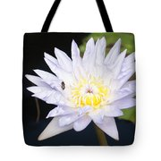 White Waterlily With Fly...   # Tote Bag