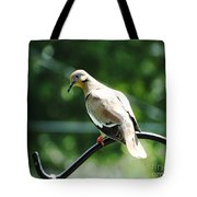 White Winged Dove Tote Bag