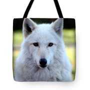 White Wolf Close Up Tote Bag