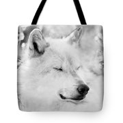 White Wolf Shut Eye Tote Bag