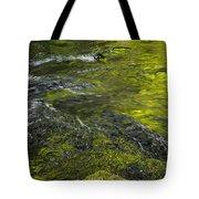 Whitehorse Falls Series 1 Tote Bag