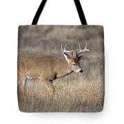 Whitetail Buck On The Move Tote Bag
