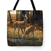 Whitetail Deer - Autumn Innocence 1 Tote Bag by Crista Forest