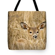 Whitetail In Weeds Tote Bag