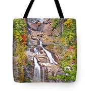 Whitewater Falls Vertical Tote Bag