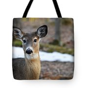 Who Is There Tote Bag