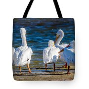 Who Is With Me On This? Tote Bag