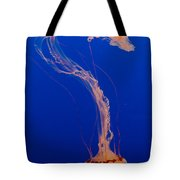 Who What Where When Purple Striped Jelly 1 Tote Bag