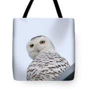 Who You Lookin' At? Tote Bag