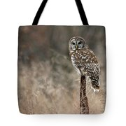Whooo Goes There Tote Bag