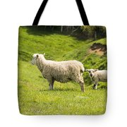 Who's Coming To Dinner Tote Bag