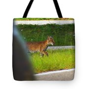 Why Did The Bobcat Cross The Road Tote Bag