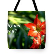 Why Not You Tote Bag