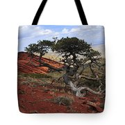 Wicked Tree And Red Rocks Tote Bag by Roger Snyder