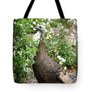 Wide Eyed Wild Tote Bag
