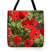 Wild Anemone Flowers In A Spring Field  Tote Bag