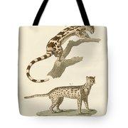 Wild Animals Tote Bag