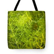 Wild Aniseed Tote Bag