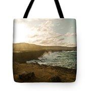 Wild Aruba Tote Bag