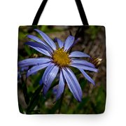 Wild Aster Flower Tote Bag