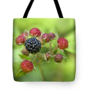 Wild Berries Tote Bag by Christina Rollo