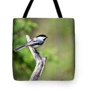 Wild Birds - Black Capped Chickadee Tote Bag