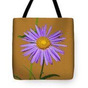 Wild Blue Aster Tote Bag