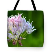 Wild Blue - Chive Blossom Tote Bag by Adam Romanowicz