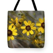Wild Brittle Bush Flowers Tote Bag