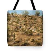 Wild Burros Tote Bag