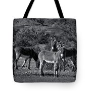 Wild Burros In Black And White  Tote Bag